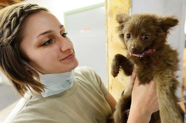 Heene Road Veterinary Surgery