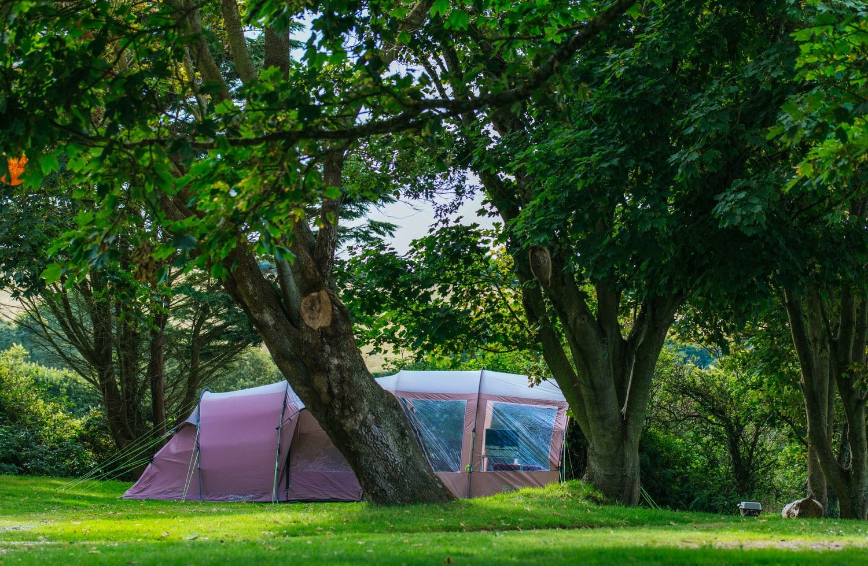 Little Meadow Campsite