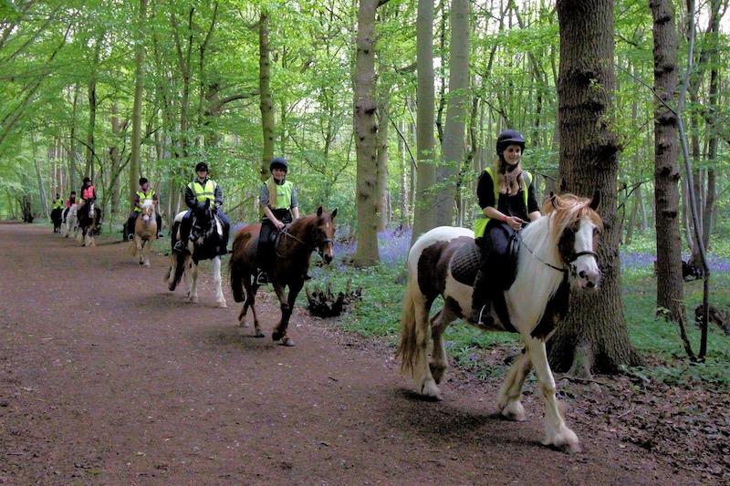 Belfairs Riding School