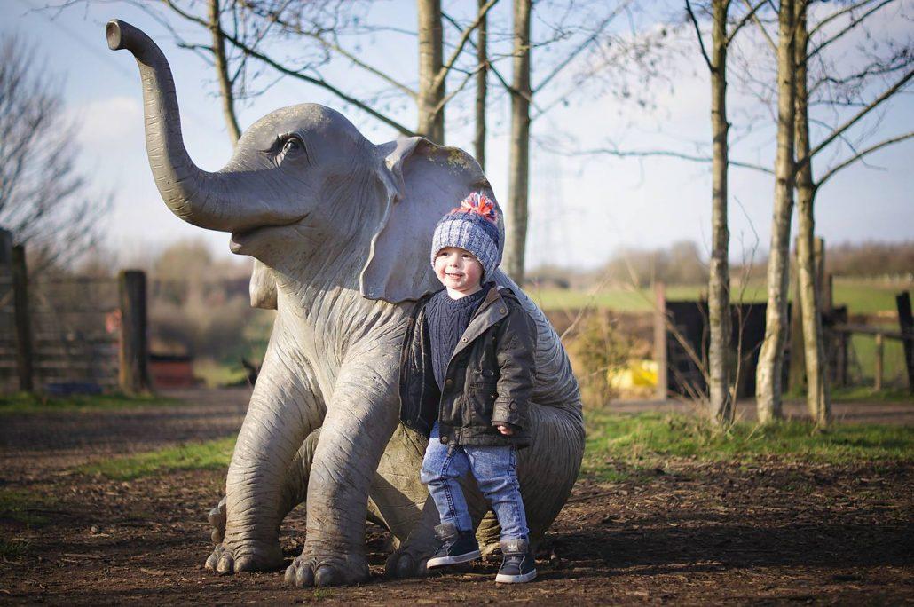 Lancaster Park and Animal Farm